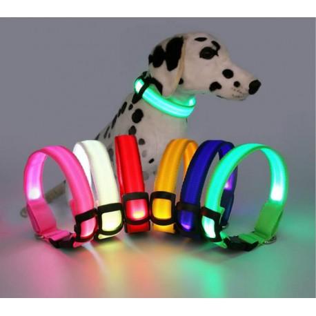 Collier pour Chien Lumineux - Led - Rechargeable USB